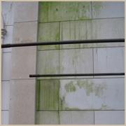 4.Удаление Чистка плесени и мха с гранита, мрамора, кирпича